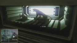 Alien_Isolation_Find_Keycard_to_Access_San_Cristobal_Medical_Wards_3-250x140.jpg