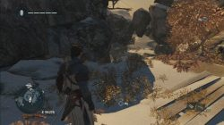 AC Rogue Viking Armour Location