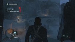 Assassin's Creed Rogue Fogo Native Pillar Totem