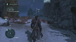 Assassin's Creed Rogue Genessee Native Pillar Totem