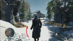 Assassin's Creed Rogue Harbour Deep Viking Sword