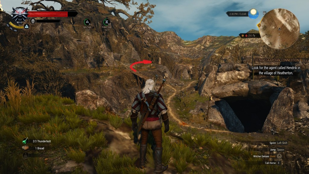 Is Anything There Is It Even Possible To Get Up To That Tree Witcher