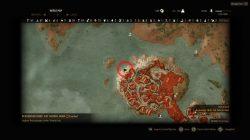 Witcher 3 Cat School Gear Diagrams Location