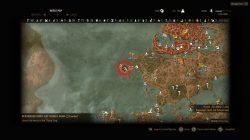 Witcher 3 Feline Crossbow