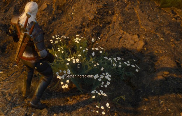 how to make roach jump in witcher 3