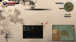 Witcher 3 pássaro ilha 3