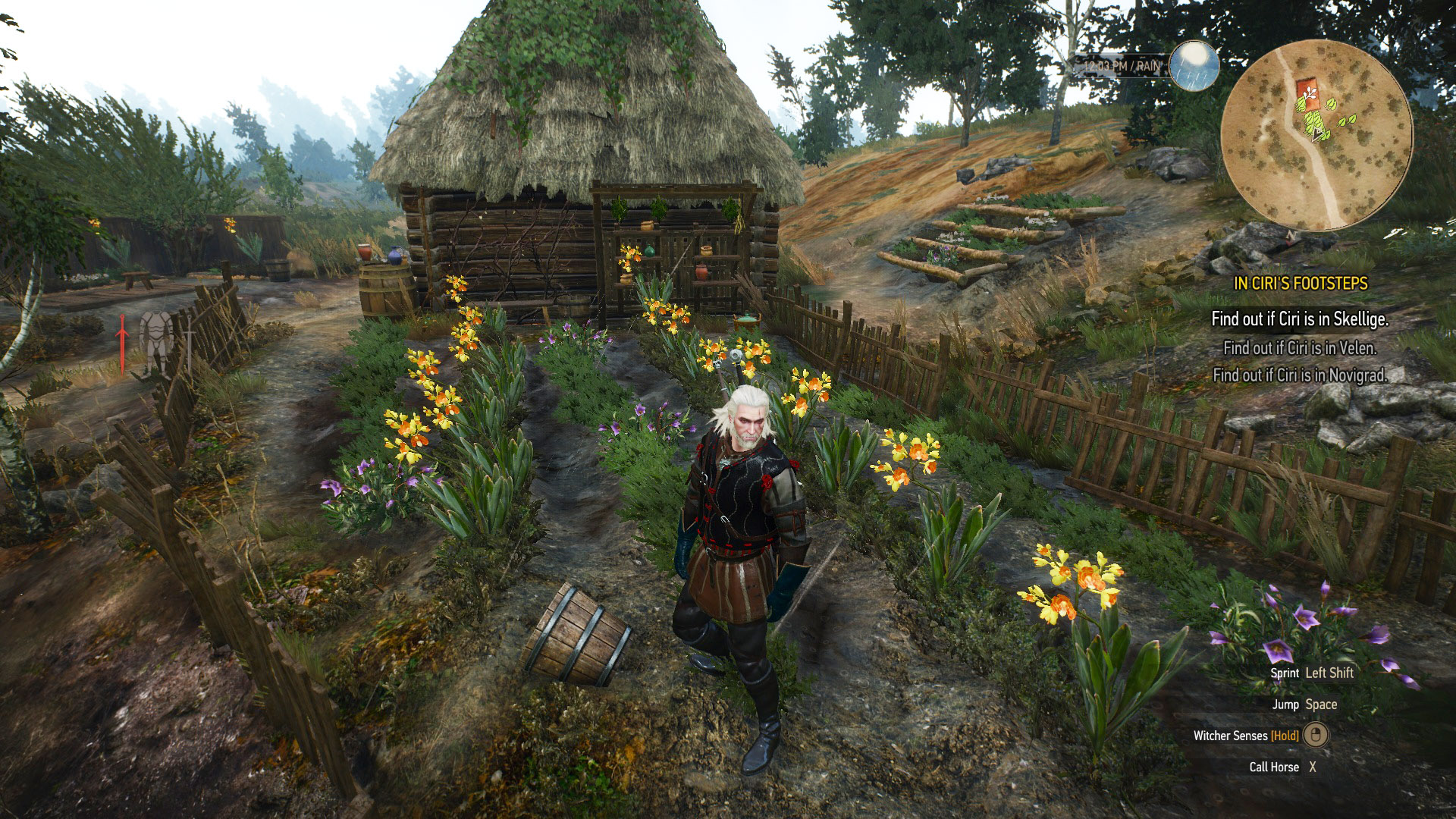 herb locations the witcher 3