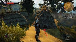 Witcher 3 fora da frigideira para o fogo 3
