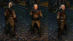 witcher 3 enhanced bear ursine armor