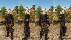Witcher  Cat Armor Fast Heavy