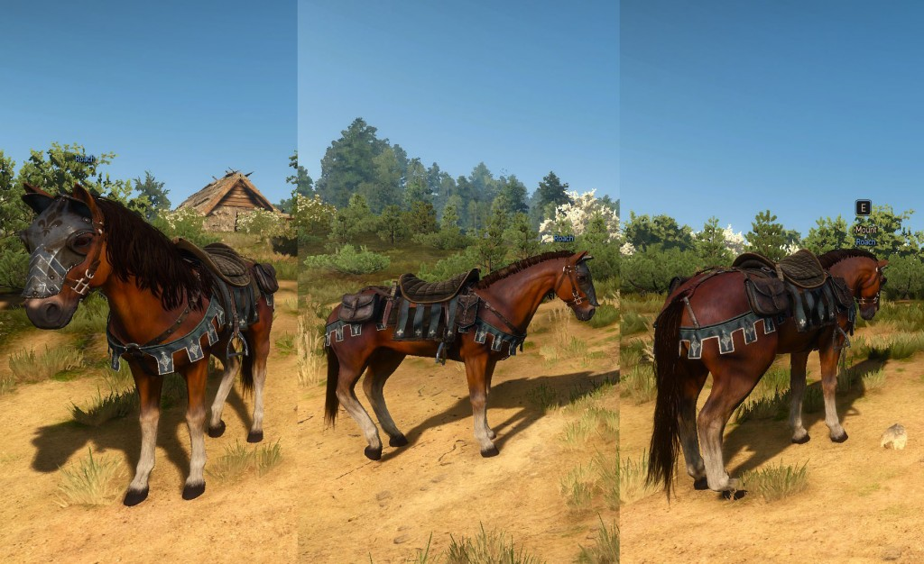 Witcher 3 Temerian Horse Equipment