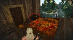 Beann 39 Shie Relic Steel Sword The Witcher 3