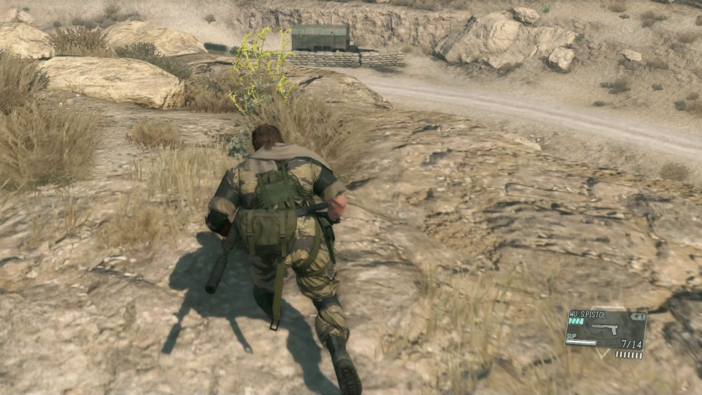 Medicinal Plants Locations MGSV The Phantom Pain