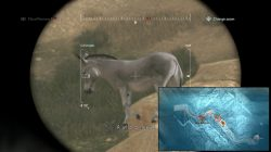 mgsv wild animal locations