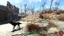dogmeat-location-fo4