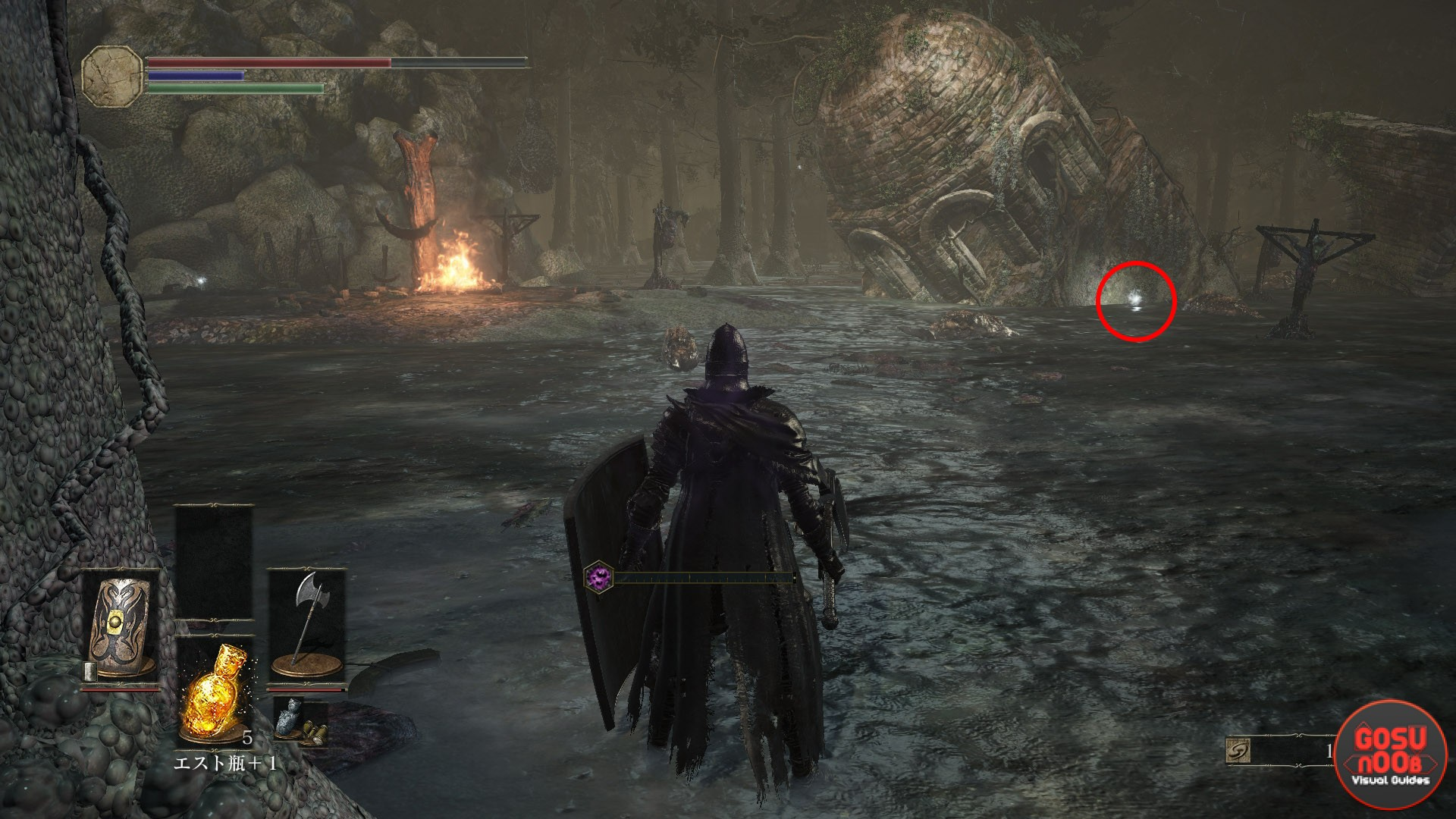 Location and use of fragments of estus in Dark Souls 3