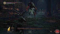 dks3 siegward yhorm fight