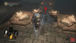undead bone shard catacombs dks3