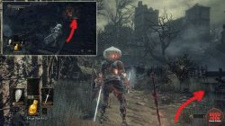 Sewers Untended Graves Location Dark Souls 3