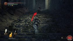 Where to Find Spider Shield Dark Souls 3