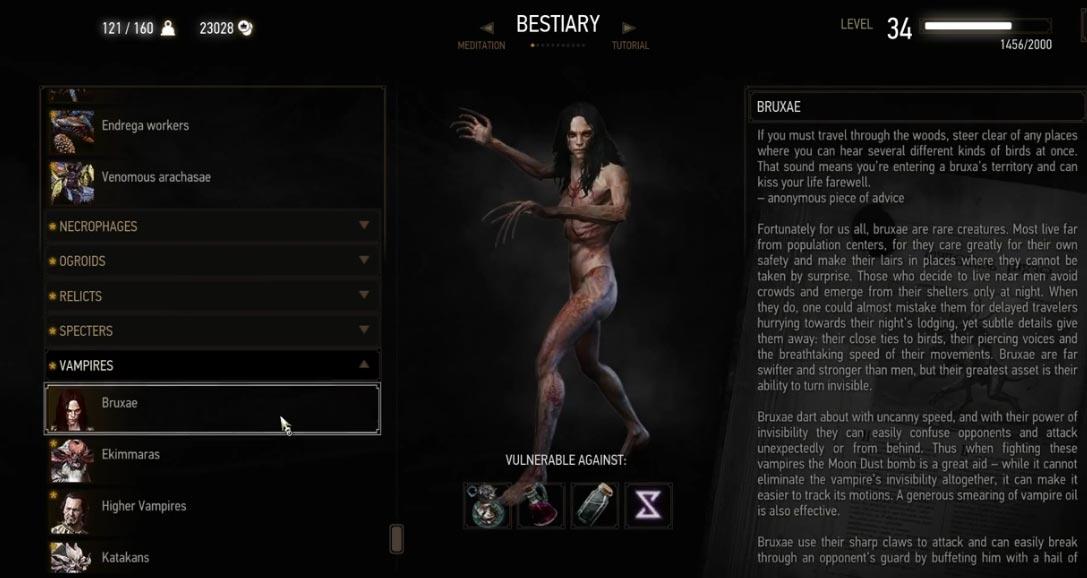 Witcher 3 bruxa