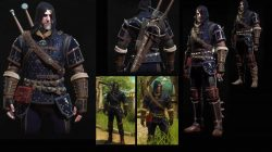 grandmaster feline cat armor witcher 3 blood wine