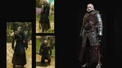 grandmaster ursine bear armor witcher 3 blood wine