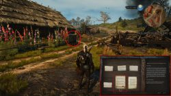 witcher 3 blood and wine starting location