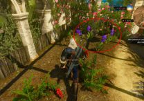 blue lotus flower witcher 3