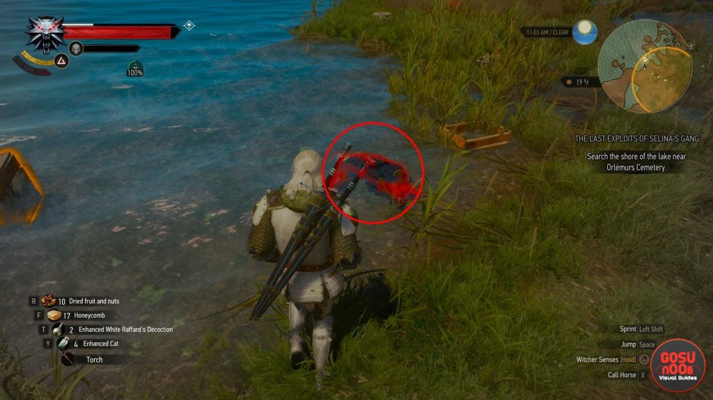 The Witcher 3: Blood and Wine ? So kommen Sie zum Toussaint Stahlschwert (Guide)
