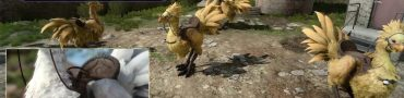 Final Fantasy XV Chocobo Customization