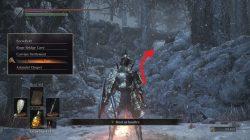 Follower Torch Location Ashes of Ariandel Dark Souls 3