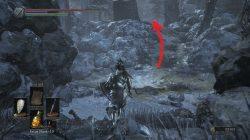 Follower Torch Location Ashes of Ariandel Dark Souls 3 DLC