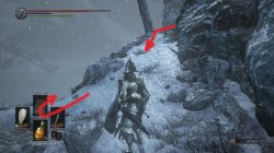 Follower Torch Location DLC Ashes of Ariandel Dark Souls 3