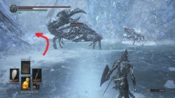 Snap Freeze Location Dark Souls 3 Ashes of Ariandel