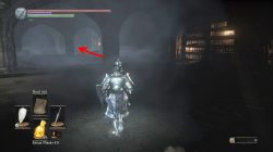 ashes of ariandel new armor with cape