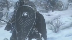 tear drop shield dks3 ariandel