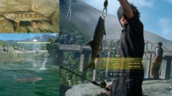 Cherrycomb Trout Fish Location FFXV