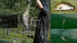 Crag Barramundi Fish FFXV
