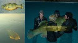 Devil of the Cygillan FFXV Fishing QUest