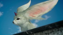 ffxv summons carbuncle