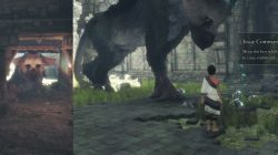 Issue Trico Command to break barrels Last Guardian