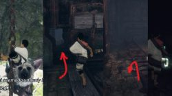 Where to find barrels in the last guardian