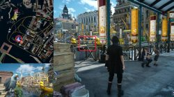Seagull Photo Challenge Final Fantasy XV