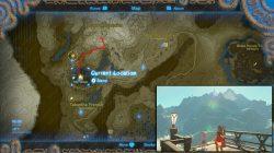 Bird in the Mountains big tree location zelda