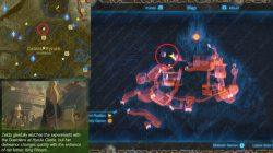 Hyrule Castle Map Breath Of The Wild Maping Resources