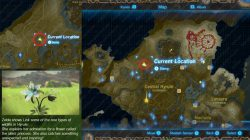 Recovered Memory 9 Map Location Silent Princess Zelda Breath of the Wild