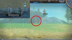 Zelda BOTW How to Get Zora Armor Pants