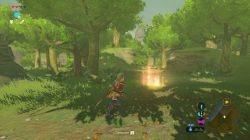 Zelda Breath of the Wild Photo 12 Location