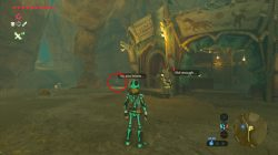 missing in action side mission zelda